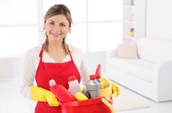 furniture cleaners n12