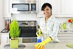 n12 domestic cleaners